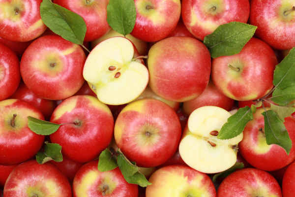 """ผลการค้นหารูปภาพสำหรับ แอปเปิ้ล"""""""