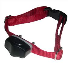 Invisible Fence Brand Computer Collars New Replacement Collar Units For Your Dog S Invisible Fence Brand System