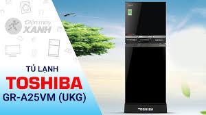 Tủ lạnh Toshiba GR-A25VM (UKG) giá rẻ, có trả góp 06/2020