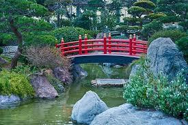 japan garden nature japanese green
