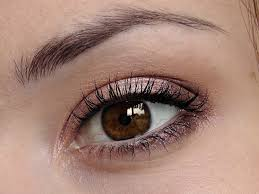 makeup for dark brown eyes you