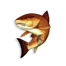 Signmission Red Snapper Fish Decal Window Sticker Truck Fishing For Sale Online Ebay