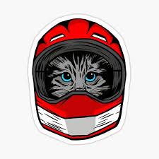 Cat Helmet Stickers Redbubble