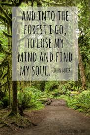 nature is my sanctuary quotes to inspire heal forest quotes