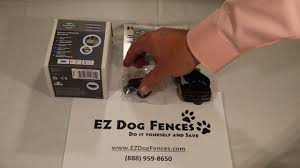 Petsafe Cat Fence Collar Review By Ez Dog Fences Youtube