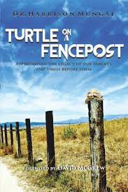 Turtle On A Fence Post By Harrison Mungal