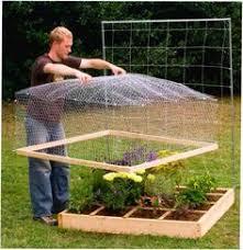 8 Raised Bed Fencing Ideas Vegetable Garden Veggie Garden Raised Garden