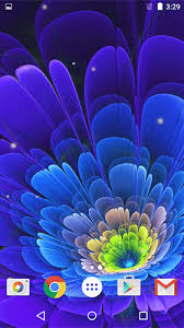 glowing flowers by free wallpapers and