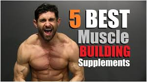 supplements to add muscle m faster
