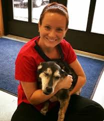 Brenda Johnson – Pets and Vets as Partners