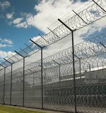 Liam Martin Prison Numbers Are Dropping But Home Detention Is Too Harsh Nz Herald