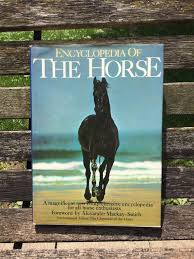 vintage horse book horse photography