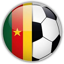 Amazon Com Jjh Inc Cameroon Flag Glossy Soccer Ball Vinyl Decal Sticker Waterproof Car Decal Bumper Sticker 5 Kitchen Dining