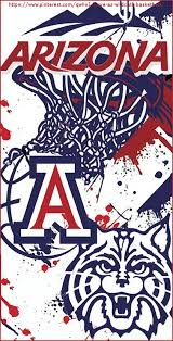 arizona wildcats basketball arizona