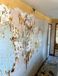 49 wallpaper removal jacksonville fl