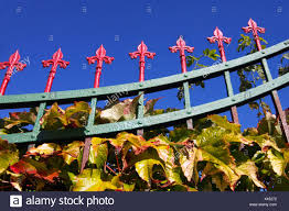 Ivy Plant Climbing Iron Fence High Resolution Stock Photography And Images Alamy