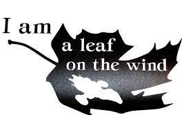 Firefly Serenity Themed Leaf On The Wind Vinyl Decal Ebay Firefly Serenity Firefly Tattoo Firefly