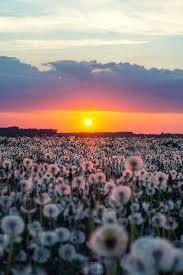 Natureza Perfeita de Deus adicionou uma... - Natureza Perfeita de ...