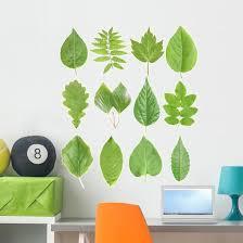 Green Leaves Wall Stickers Wallmonkeys Com