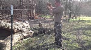 How To Install Fence Stays On Barbed Wire Wire Fence Wire And Wood Fence Barbed Wire Fencing