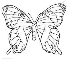 Kleurplaat Dieren Vlinder Kleurplaat Vlinder
