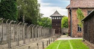 auschwitz concentration c tour