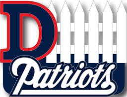 Patriots D Fence Pin