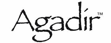 agadir argan oil treatment review