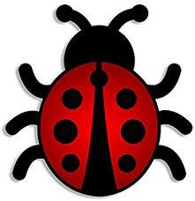 Amazon Com American Vinyl Lady Bug Shaped Sticker Cute Ladybug Decal Automotive