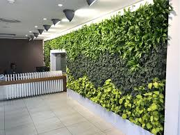 living walls and indoor irrigation
