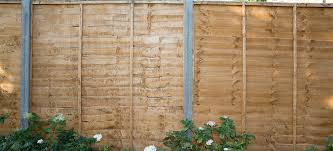 can my neighbour put up a fence without