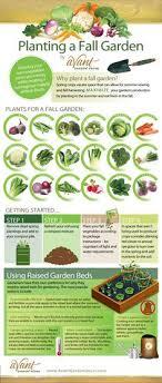 11 best vegetable planting calendar