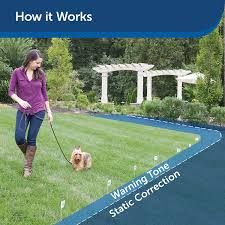 Amazon Com Petsafe In Ground Fence For Dogs And Cats Over 8 Lb Waterproof With Tone And Static Correction Petsafe Wireless Pet Fence Products Pet Supplies
