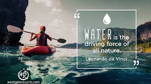water is the driving force of all nature travel motivational quotes
