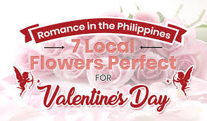 romance in the philippines 7 local