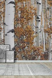 Into The Birchwood Wall Mural Wallpaper