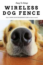Best Wireless Dog Fences 2019 The Solution To Your Dog S Happiness And Safety Wireless Dog Fence Dog Fence Dogs
