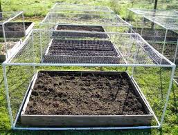 garden net frames capper s farmer