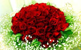 صور ورود حلوه اجمل باقات الورود الحمراء صباح الحب