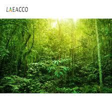 Laeacco الغابات الاستوائية الغابة أشجار المطر الأخضر شجيرة خلفيات