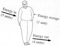 why the energy balance equation results