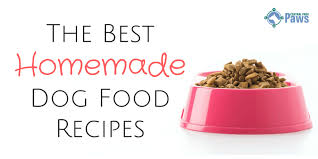 the best homemade dog food recipes 82