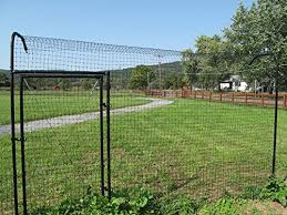Kitty Corral Access Gate For 6 X 3 Ft For Cat Fencing System Shepherdnevejan