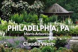 Phyto Studio-Philadelphia, Pennsylvania: Claudia West