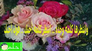 شعر حب وغرام وعشق وهيام روعة