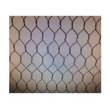 Medium Ss Chicken Wire Mesh Rs 100 Roll H K Wire Netting Industries Id 14259854348