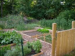 raised beds who has a cool design