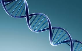 تحميل خلفيات 3d جزيء الحمض النووي علم الأحياء الكيمياء جزيء