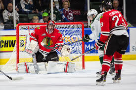 Adin Hill Named WHL Goalie of the Week – Portland Winterhawks