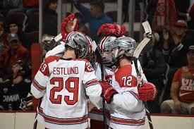 men s hockey gustaf westlund enjoying
